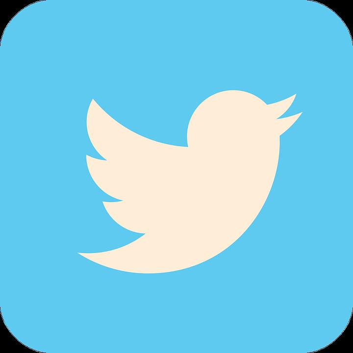 como usar o twitter