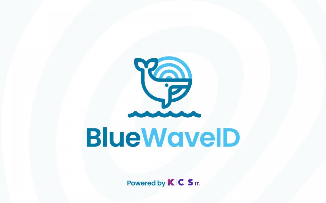 KCS IT desenvolve app BlueWaveID para potenciar estudo de cetáceos